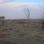 傅国涌 | 阿拉善沙漠中的月亮湖