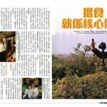 香港雜評 | 壹週刊特輯:回歸十五年 做個勇敢香港人