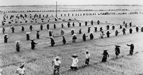 纽约时报 | 3600万中国人的墓碑