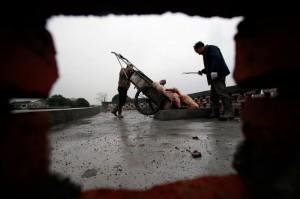 CHINA-POLLUTION-FARM-ANIMAL-PIGS