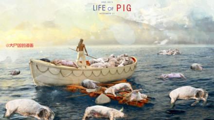 【图说天朝】浙江死猪事件:少年Pig的奇幻漂流