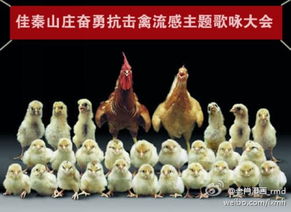 德国之声 | 禽流感阴影下的上海车展