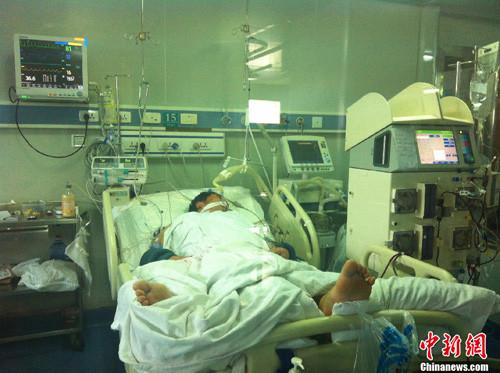 自曲新闻 | 河南省首次出现2例H7N9病例