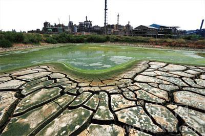 华尔街日报 | 镉大米引发担忧 中国拟展开土壤调查