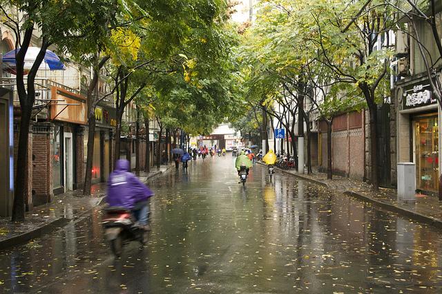 Rainy Jingan afternoon