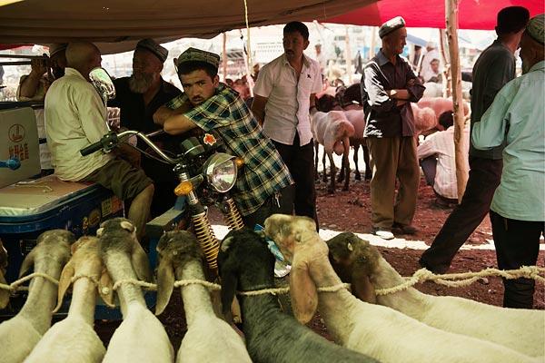 纽约时报 | 维族人在新疆日益成为弱势群体