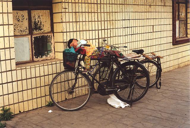 Siesta in bicicletta (2001)