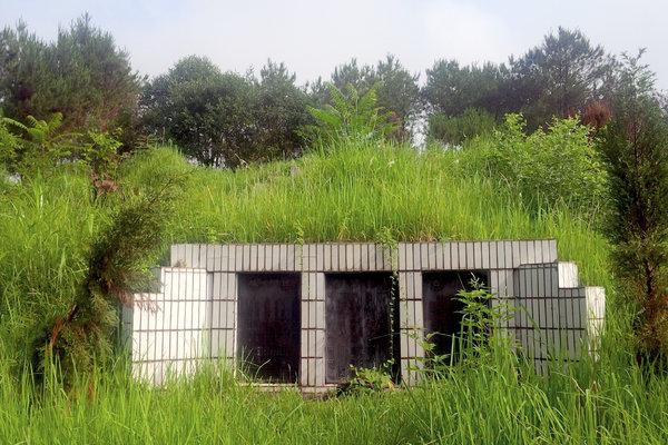 纽约时报 | 阿里巴巴与军方高层的联系 墓碑为证
