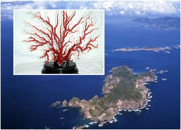 小笠原群島海洋資源豐富,當中包括紅珊瑚。紅珊瑚可製成高檔藝品擺設(小圖)。(資料圖片)
