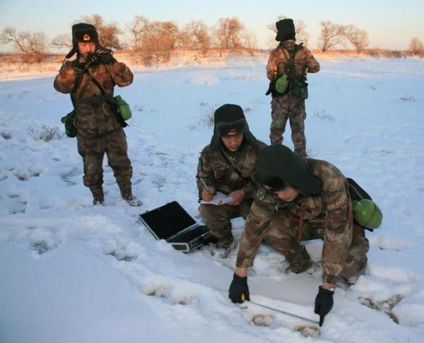 图为驻黑瞎子岛官兵对东北虎活动区域进行检迹。