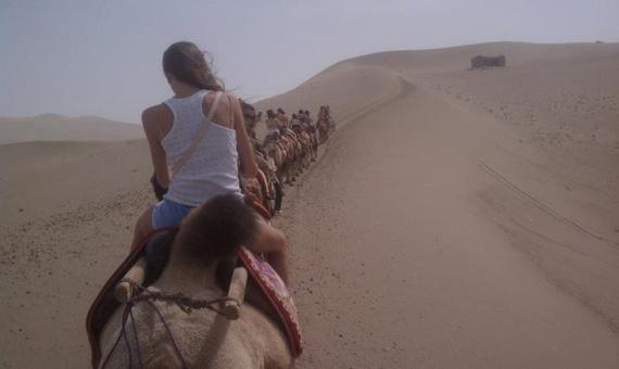 骆驼背上的女模特