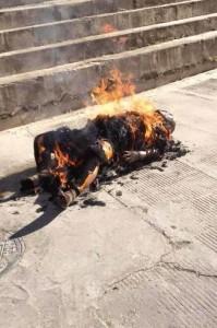 藏人自焚2