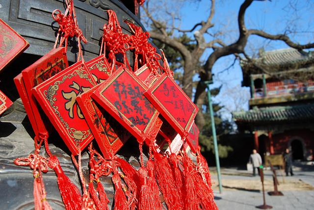 倍可亲|越生活 : 2015年反腐版《春节晚会》