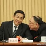 孙立平:领导体制的乱象何以形成?