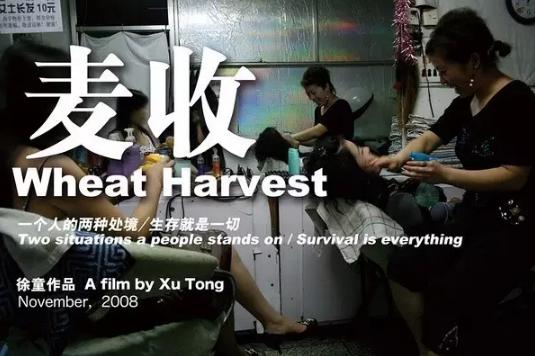 【CDTV】比起「残酷农村」,这才是中国的底层