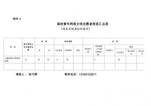 附件4 高校青年网络文明志愿者信息汇总表