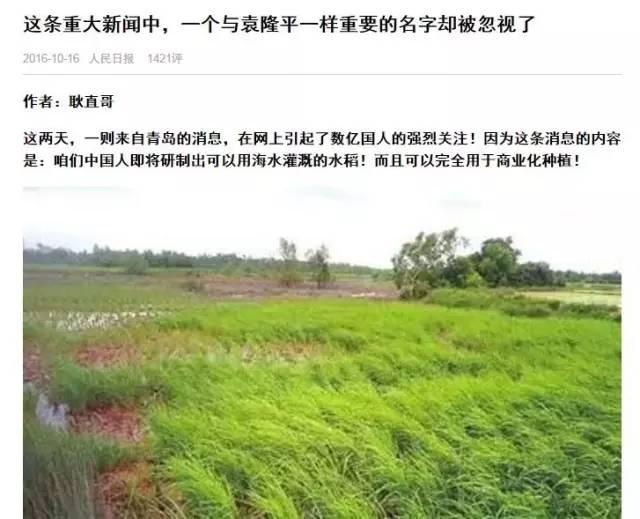 """短史记 """"中国人即将研制出海水灌溉的水稻""""刷屏 你千万别当真"""