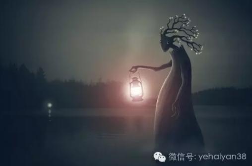 叶海燕 | 环境这么差,NGO还能做什么?