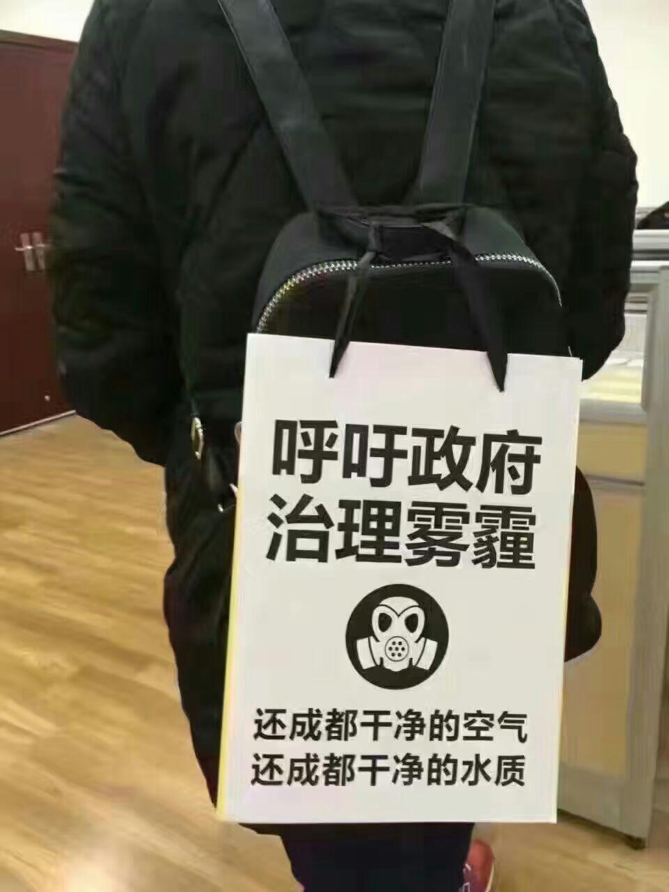 网民呼吁中国政府治理雾霾。(志愿者提供/记者乔龙)