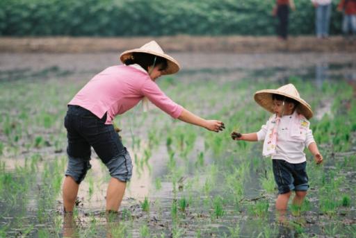 三辉图书 | 二南:唐人村的故事