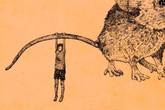 端传媒 | 鼠疫里的异乡人(上)
