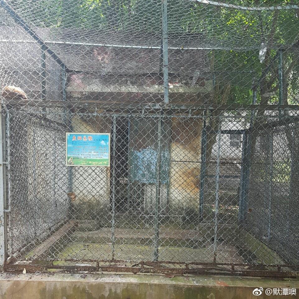 【图说天朝】惨无人道的动物炼狱