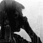 张五毛:北京 有2000万人假装在生活