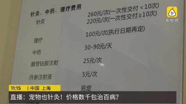 张胜坡:不要做中国人的宠物