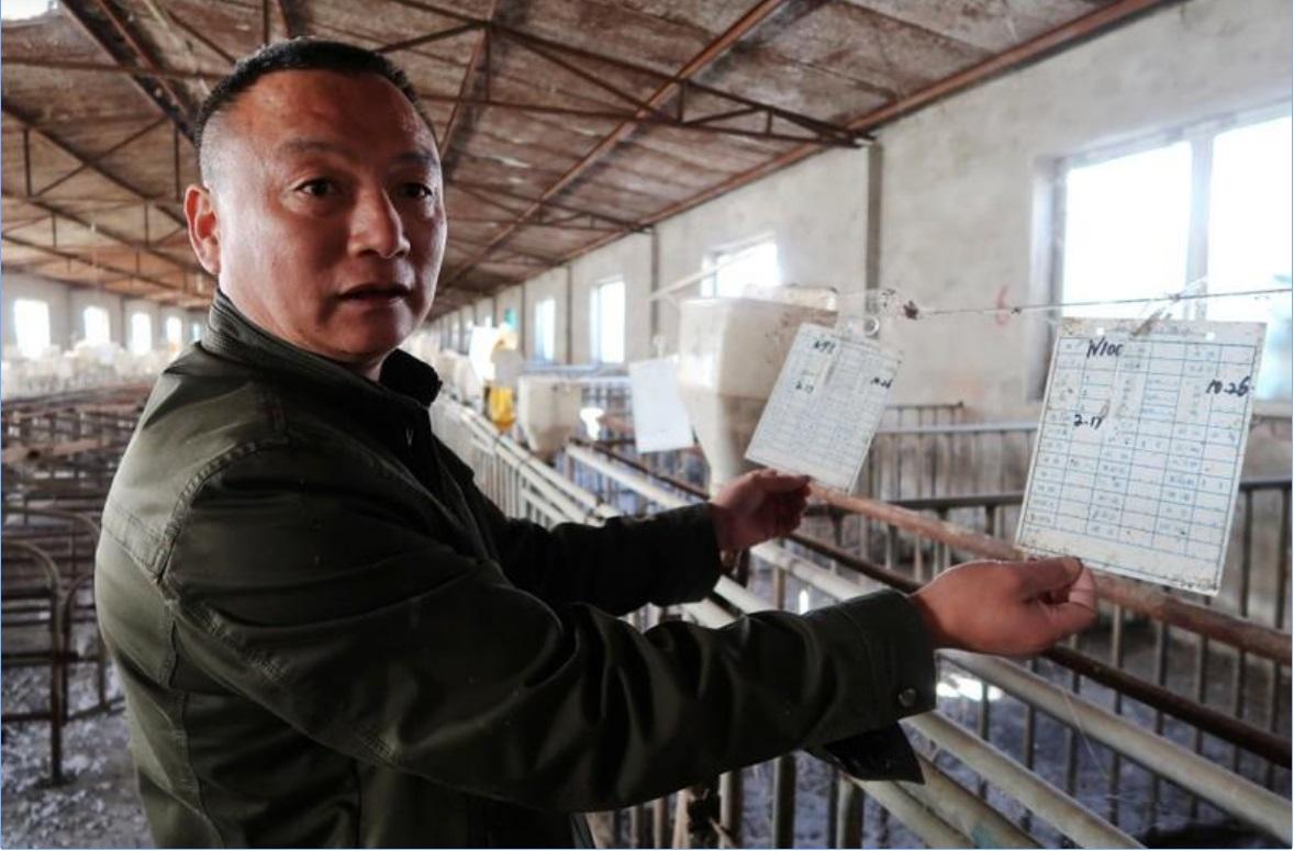博谈网 | 不是开玩笑——中国抗污染之战搅动养猪业