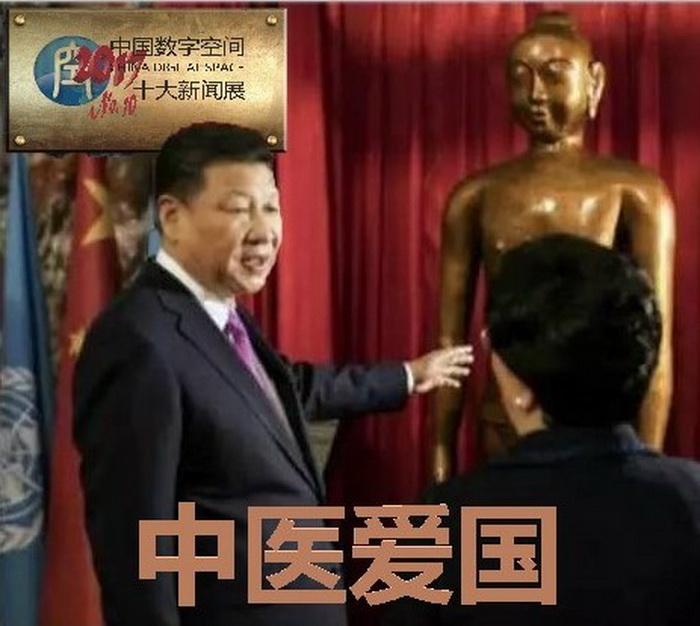 中国数字空间2017十大新闻展No. 10:中医爱国