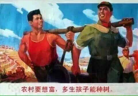 知乎 | 中国未来会不会实行强制生育?