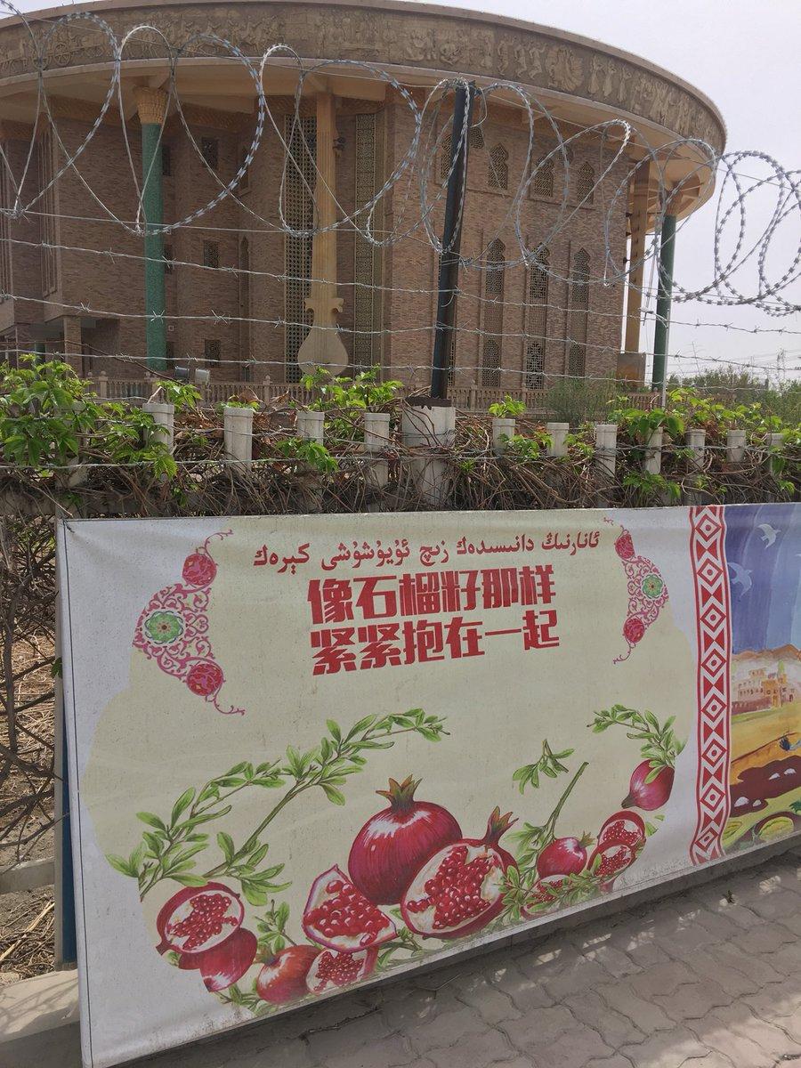 德国之声 | 德国误将维吾尔难民遣返回中国 音讯全无