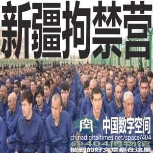 德国之声|长平观察:新疆汉人与牢头狱霸