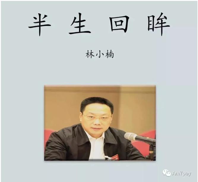 林小楠:我是怎么被整成贪官的