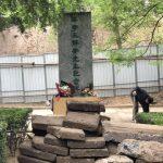 荣剑:王国维纪念碑怎样了?谁能告诉我???