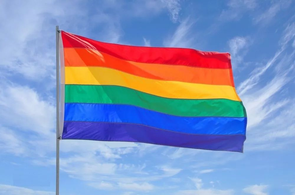 BBC | 台湾通过亚洲首部同性婚姻专法
