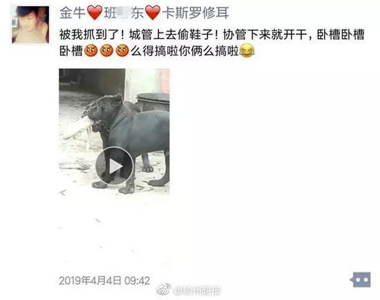 """【异闻观止】安徽一男子给狗取名""""城管、协管""""被行政拘留"""