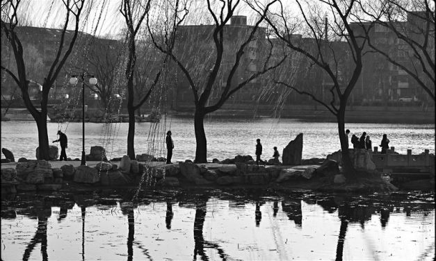 Photo: City Park, Beijing, by Alexander C. Kafka