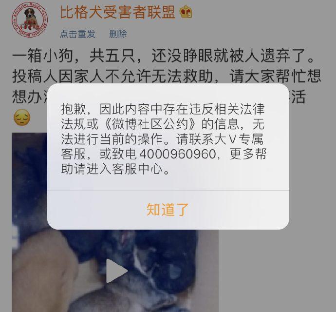 【敏感词库】微博发布禁词:狗共