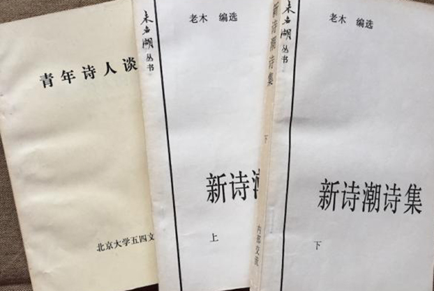 老木编选的八十年代新诗集《新诗潮诗集》(网络照片)