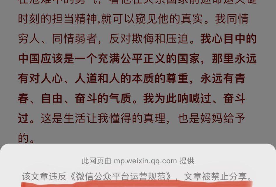 【CDT周报】第13期:我心目中的中国应该是一个充满公平正义的国家