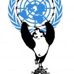 新闻背景:中国高票当选联合国人权理事会成员