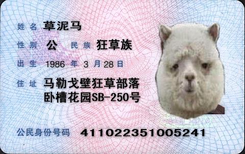 200904122101.jpg