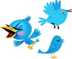 Twitter Blog Birds