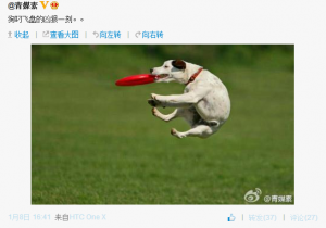 "'Frisbee Hu' was re-popularized during the Southern Weekly protests of 2013. Weibo user @sunjinwei74 quipped on January 8 about ""that cruel moment when the dog nabs the Frisbee."""