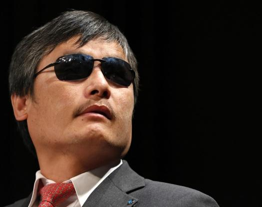 Chen Guangcheng Announces New Think Tank Posting