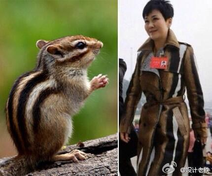 Li Xiaolin and the Amazing Chipmunk-Colored Dreamcoat
