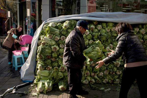 As Winter Nears, Beijing is Blanketed in Cabbage