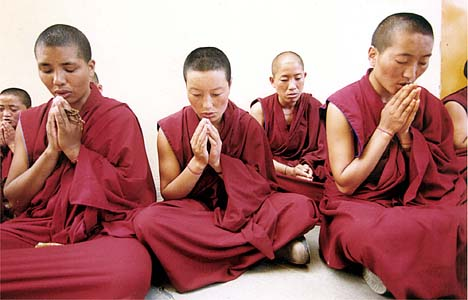 Woeser: China Detains Tibetan Monk and Supporters