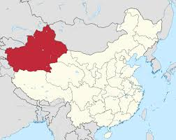 Police Shoot Eight Dead in Xinjiang Attack